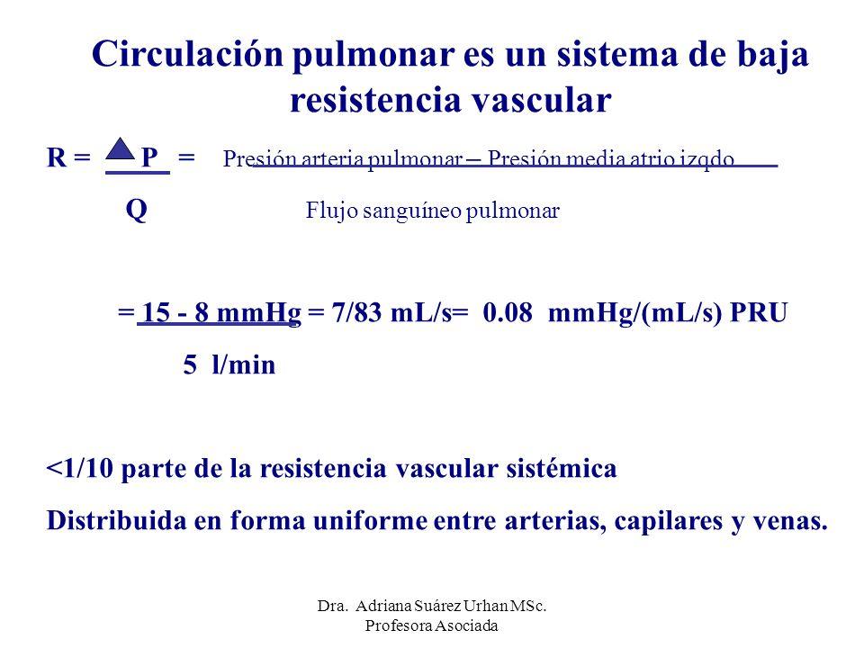 Circulación pulmonar es un sistema de baja resistencia vascular