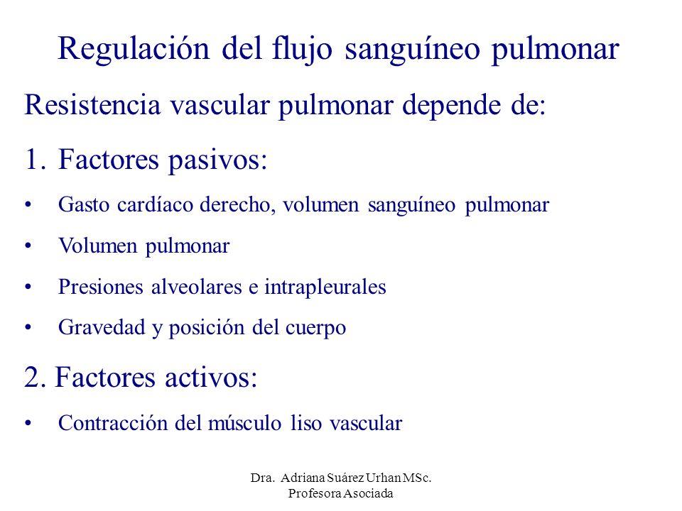 Regulación del flujo sanguíneo pulmonar