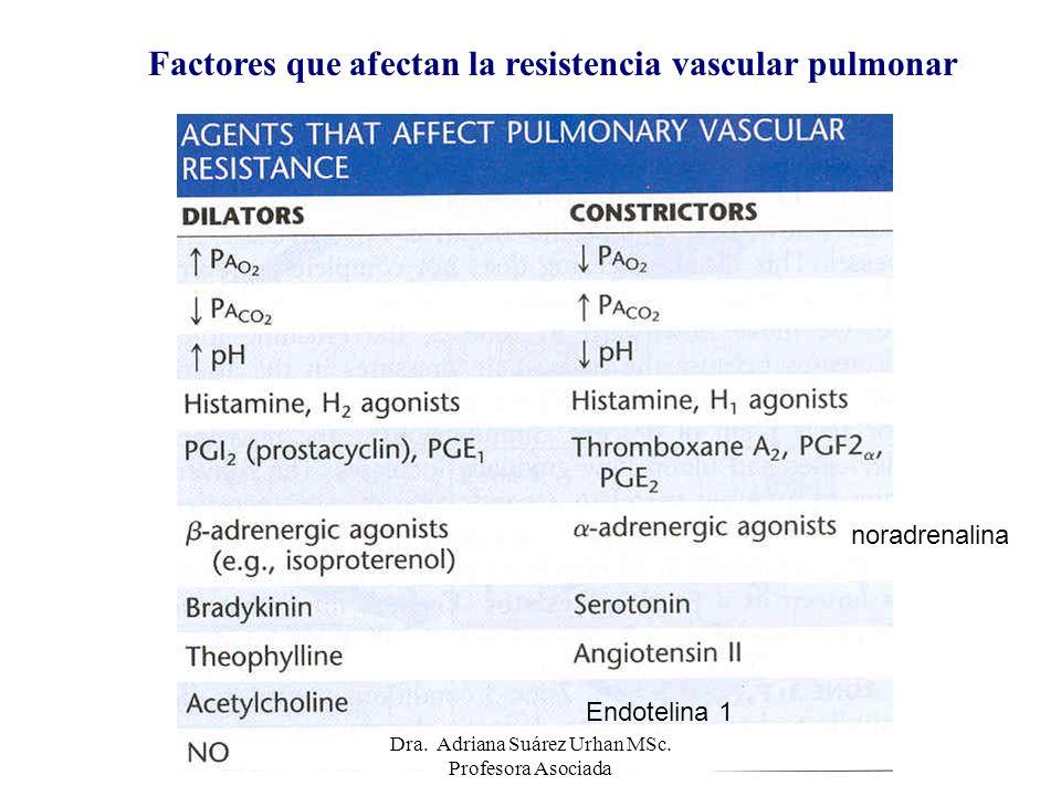 Factores que afectan la resistencia vascular pulmonar