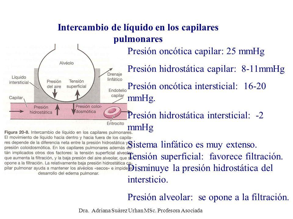 Intercambio de líquido en los capilares pulmonares