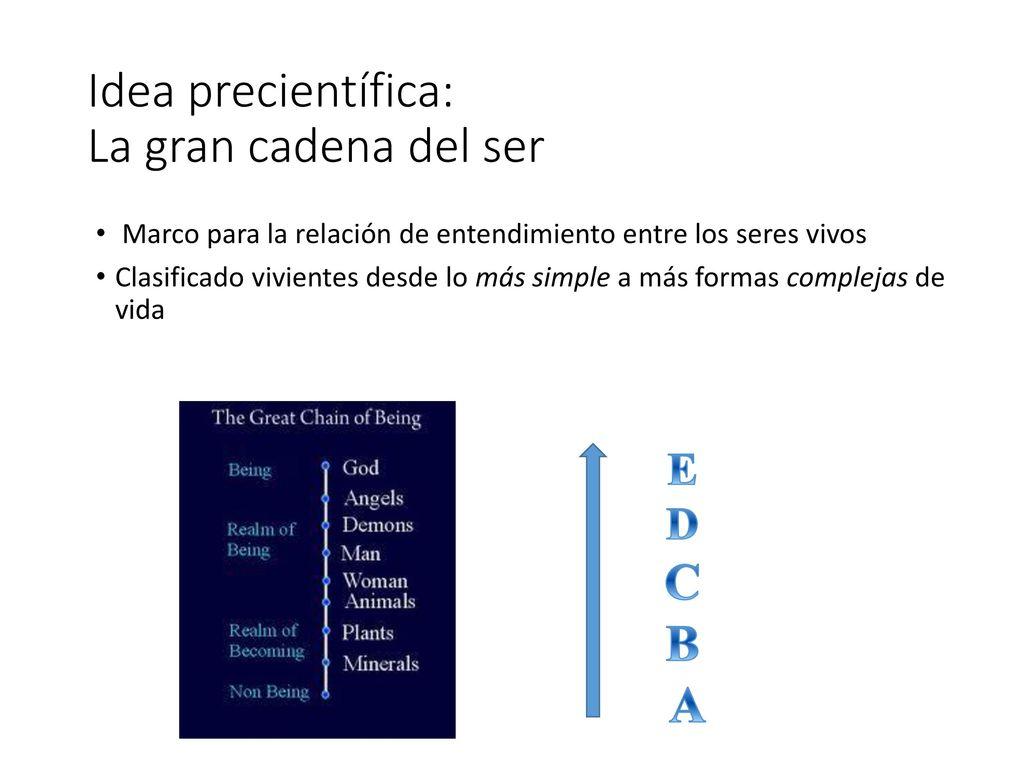 Ideas precientífica (de la Europa Medieval) - ppt descargar