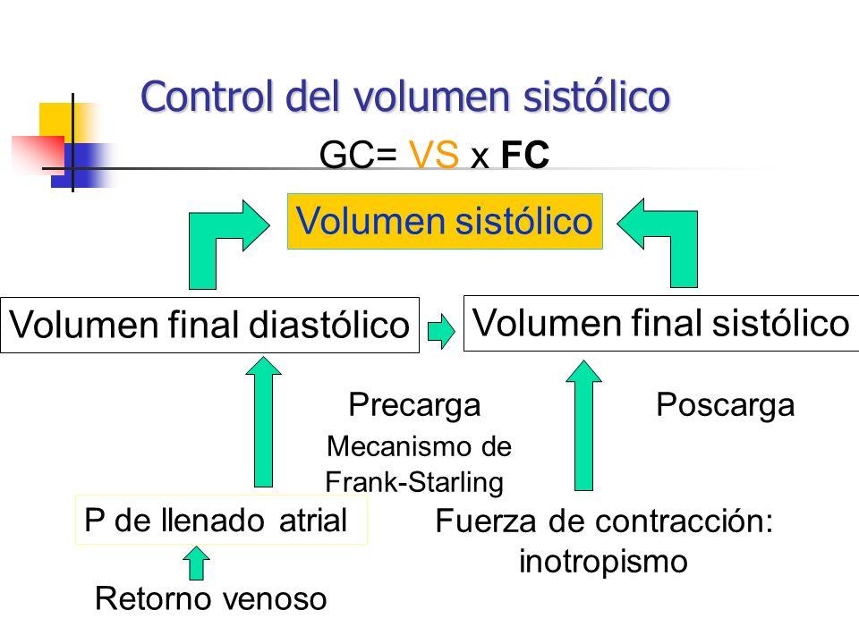 Control del volumen sistólico