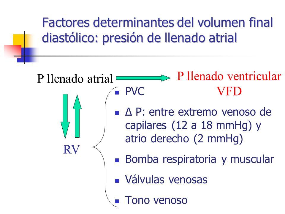 Factores determinantes del volumen final diastólico: presión de llenado atrial