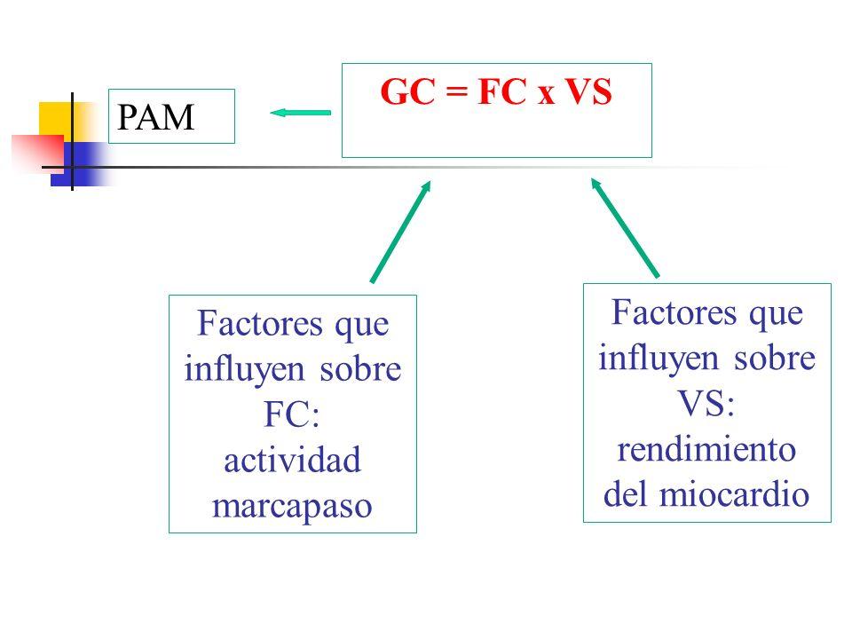 Factores que influyen sobre FC: actividad marcapaso