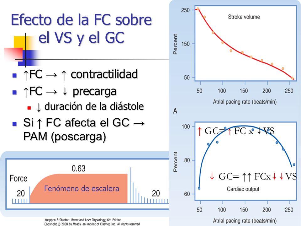 Efecto de la FC sobre el VS y el GC