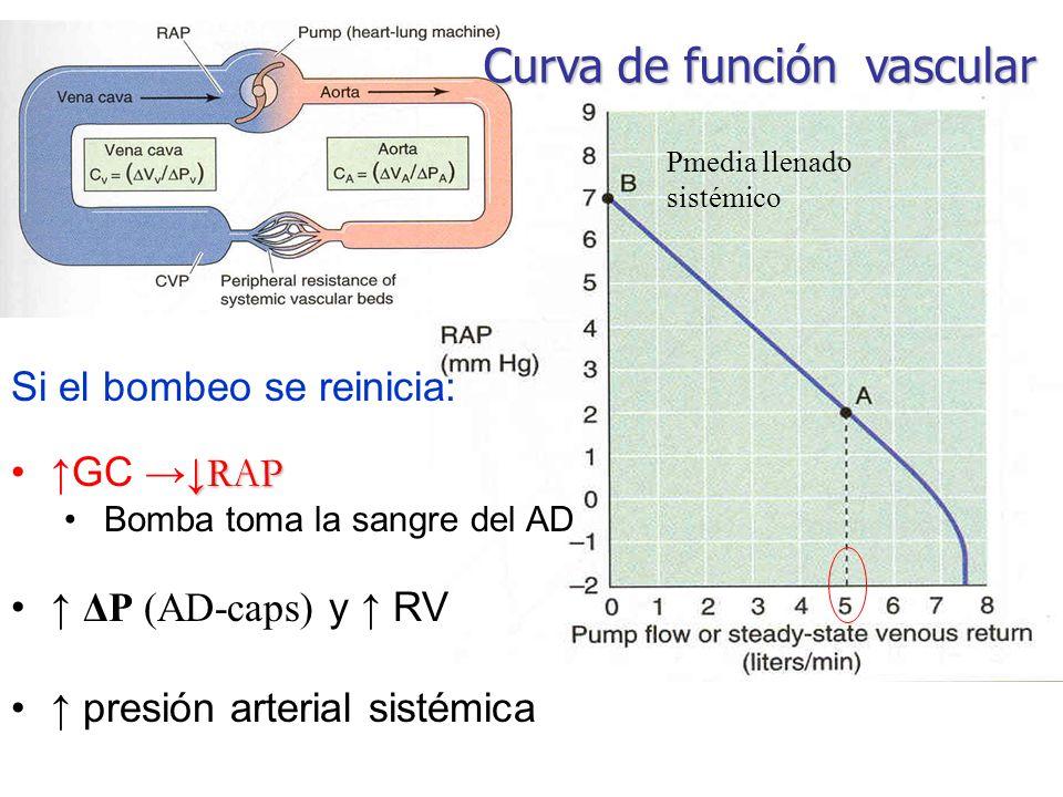 Curva de función vascular