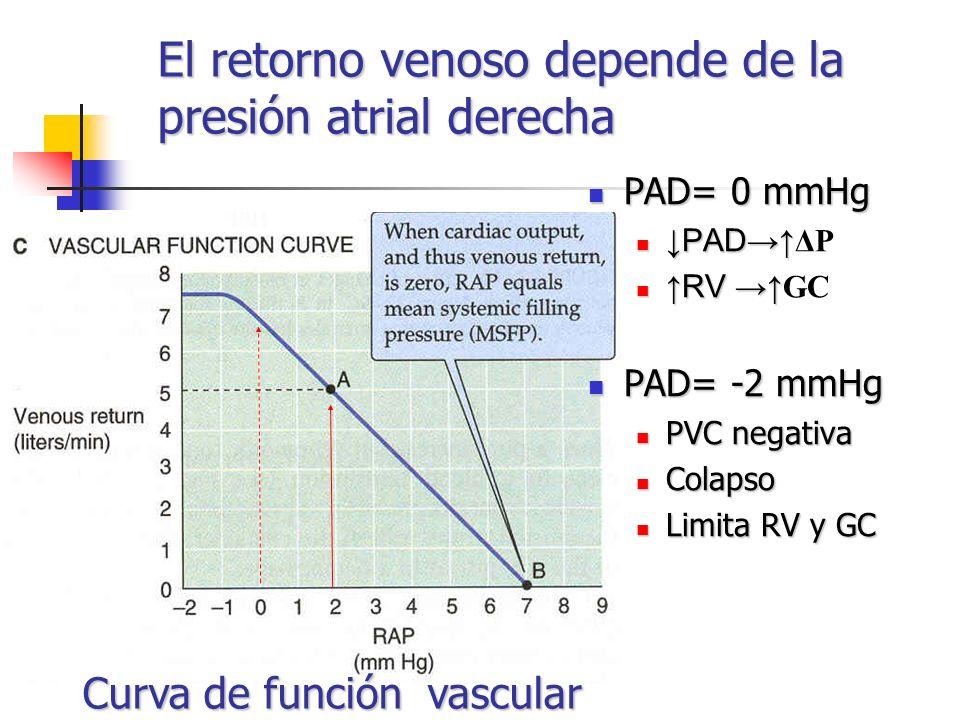 El retorno venoso depende de la presión atrial derecha