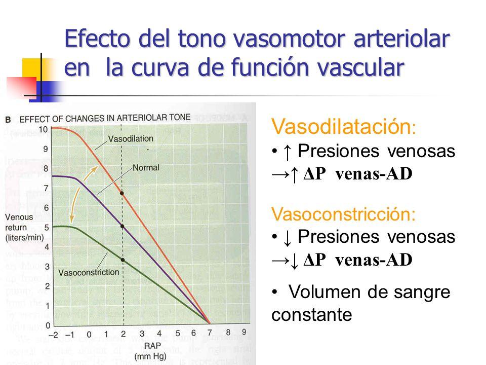 Efecto del tono vasomotor arteriolar en la curva de función vascular