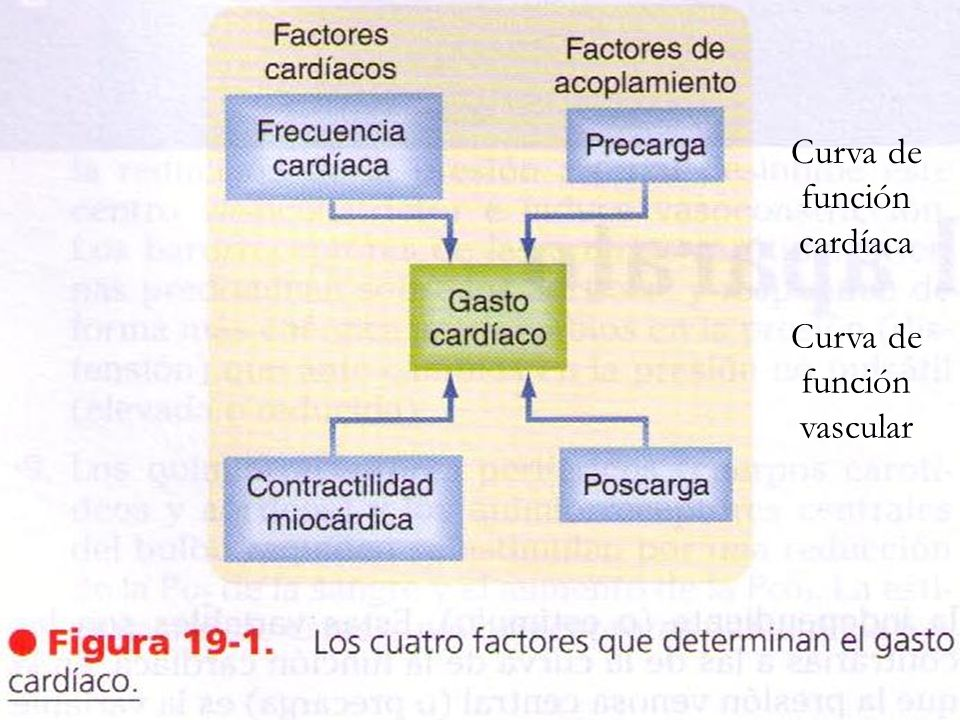 Curva de función cardíaca