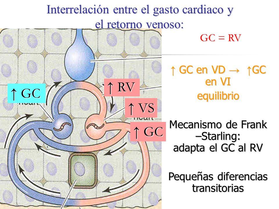 Interrelación entre el gasto cardiaco y el retorno venoso: