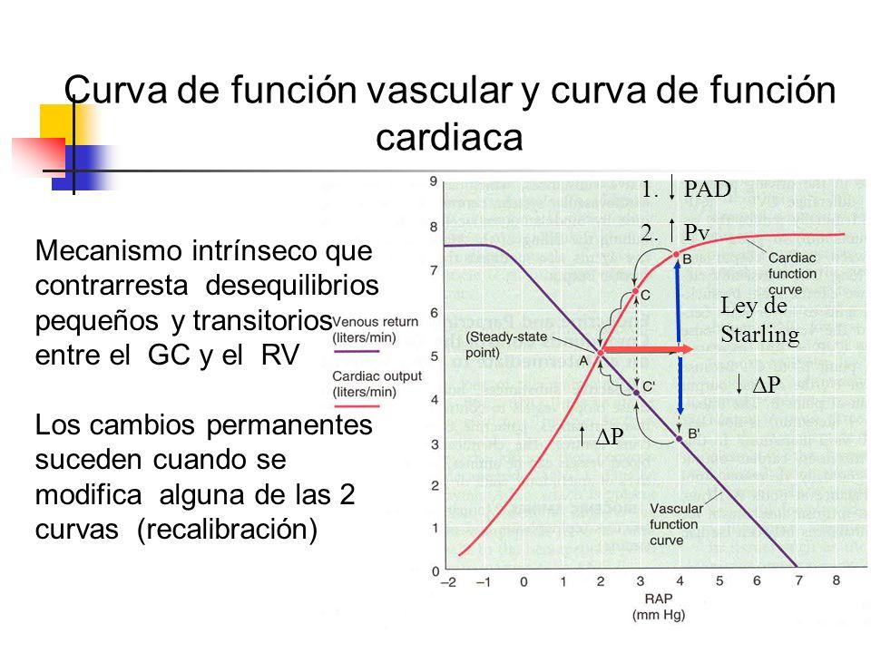 Curva de función vascular y curva de función cardiaca
