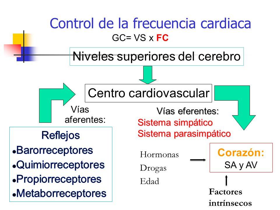 Control de la frecuencia cardiaca