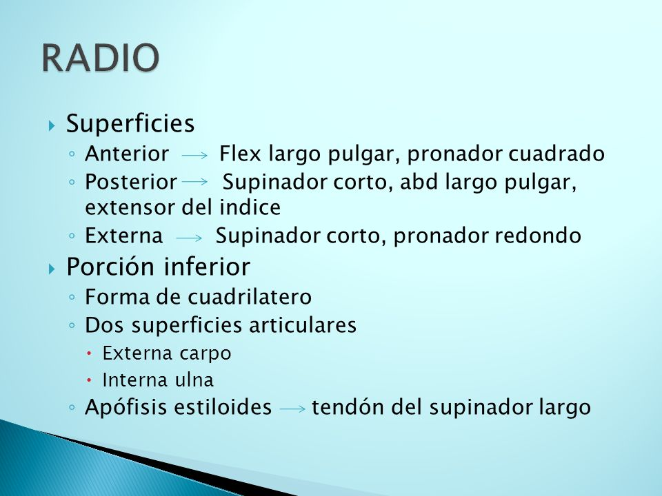RADIO Superficies Porción inferior
