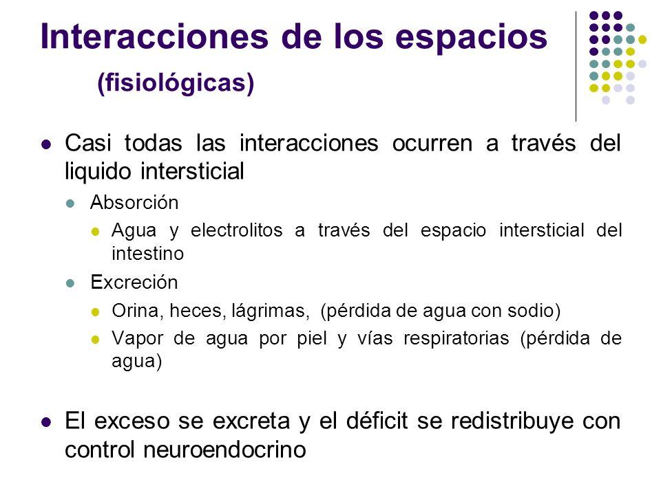 Interacciones de los espacios (fisiológicas)
