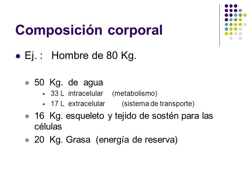 Composición corporal Ej. : Hombre de 80 Kg. 50 Kg. de agua
