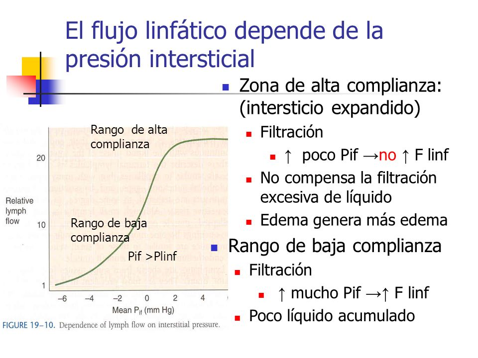 El flujo linfático depende de la presión intersticial