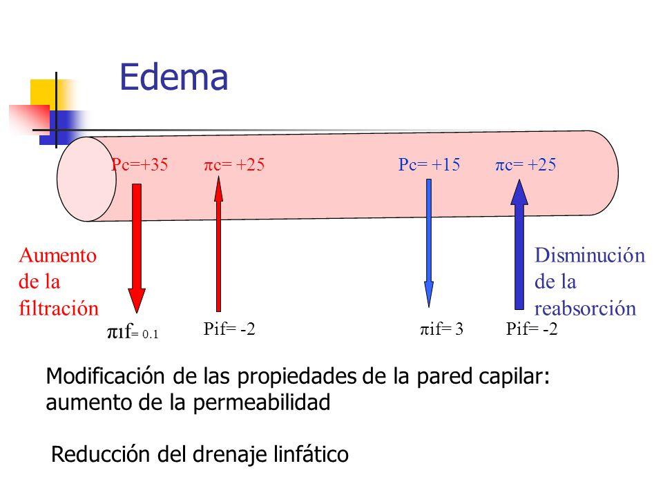 Edema πif= 0.1 Aumento de la filtración Disminución de la reabsorción