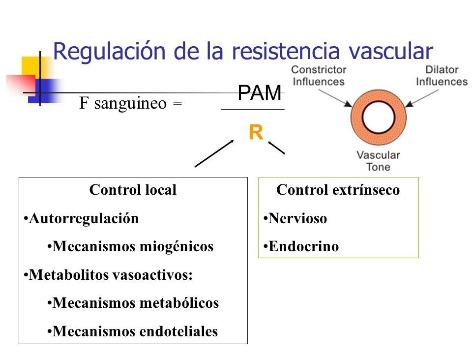 Regulación de la resistencia vascular