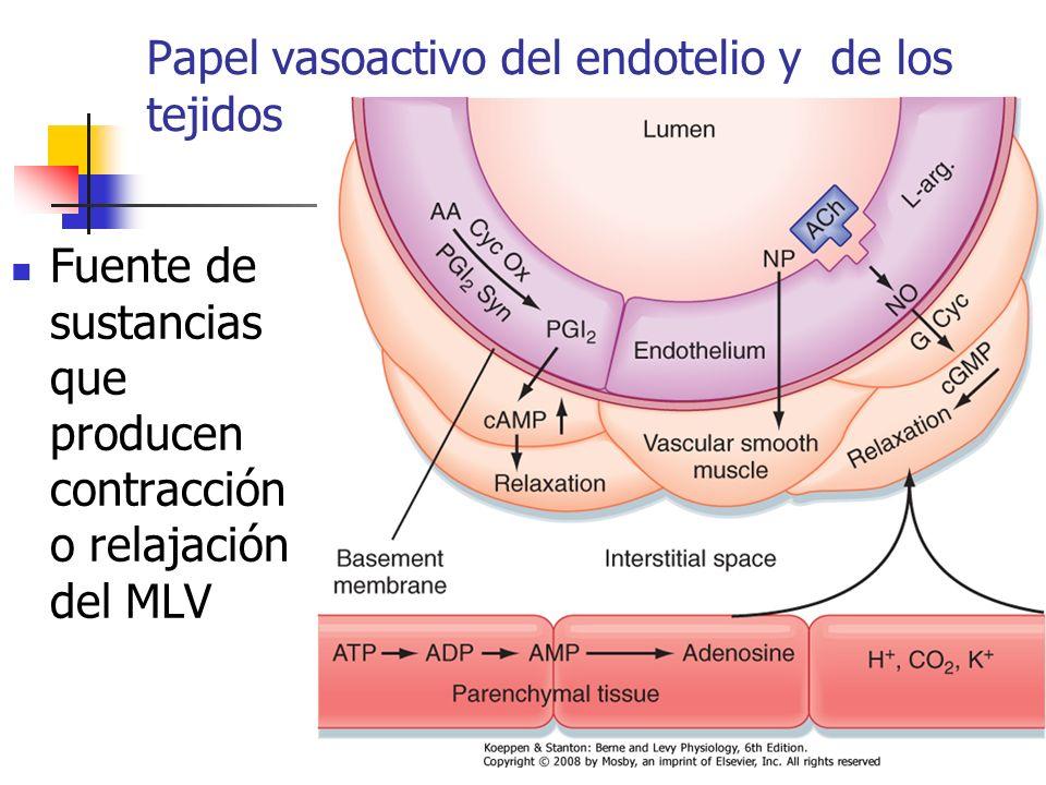 Papel vasoactivo del endotelio y de los tejidos