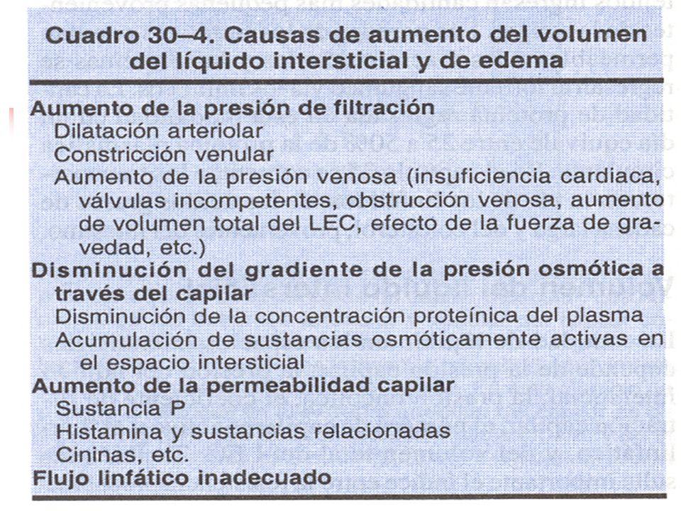 Fuerzas hidrostáticas: