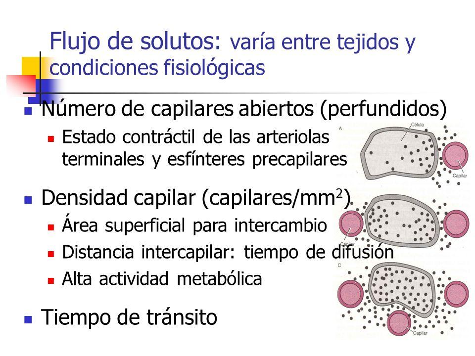 Flujo de solutos: varía entre tejidos y condiciones fisiológicas