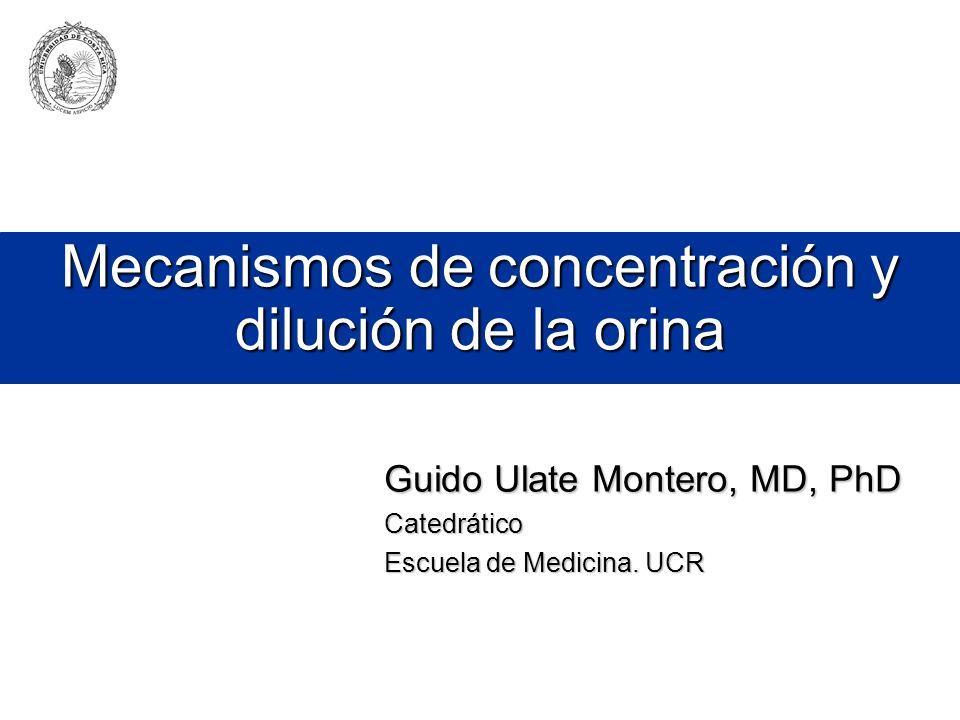 Mecanismos de concentración y dilución de la orina