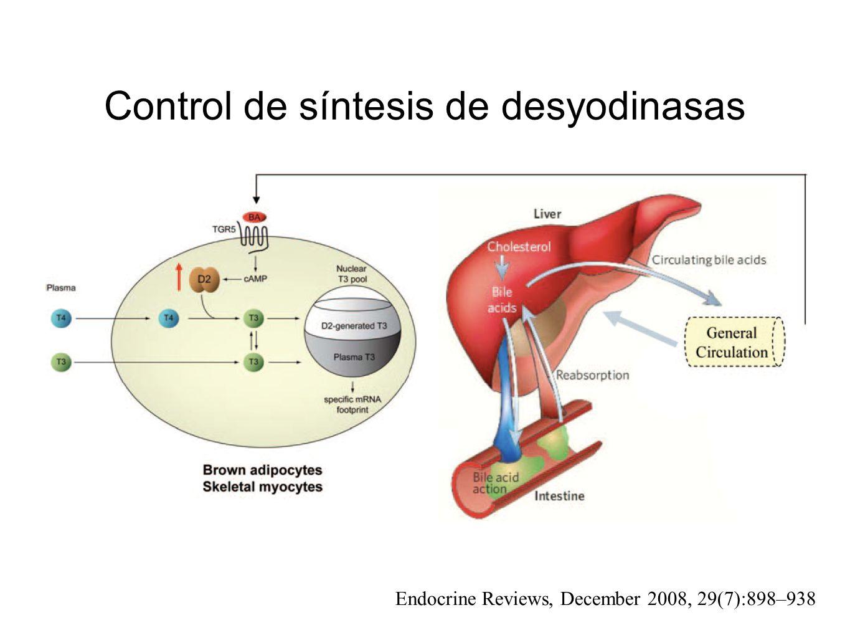 Control de síntesis de desyodinasas