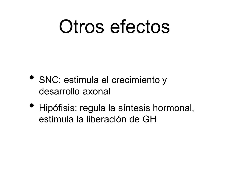 Otros efectos SNC: estimula el crecimiento y desarrollo axonal