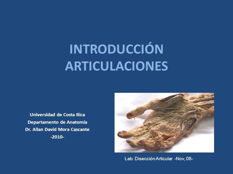 INTRODUCCIÓN ARTICULACIONES