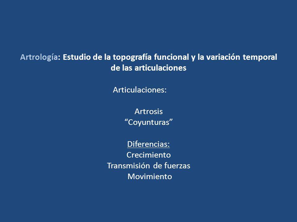 Artrología: Estudio de la topografía funcional y la variación temporal