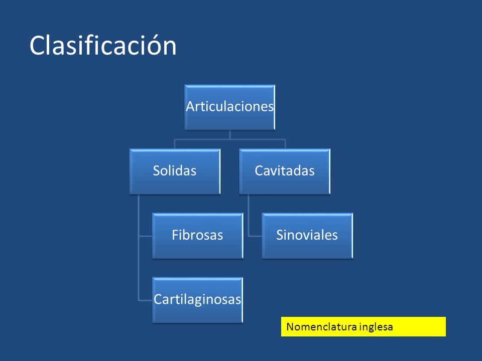 Clasificación Nomenclatura inglesa Articulaciones Solidas Fibrosas