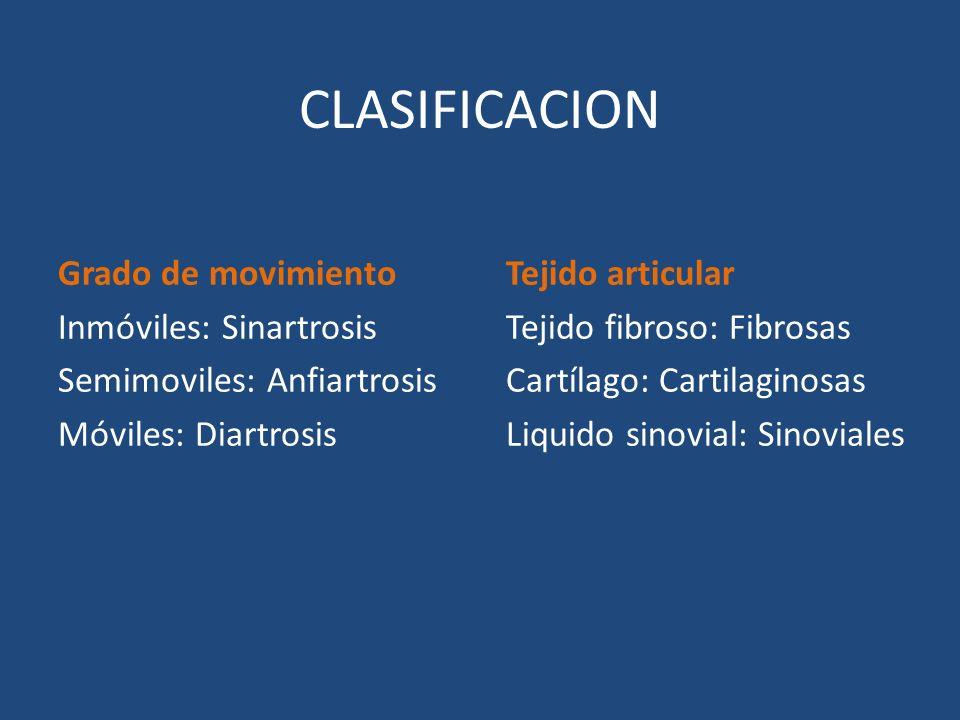 CLASIFICACION Grado de movimiento Inmóviles: Sinartrosis Semimoviles: Anfiartrosis Móviles: Diartrosis