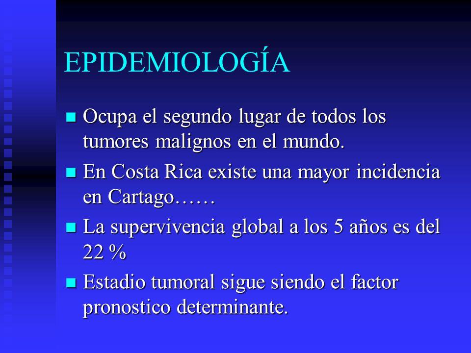 EPIDEMIOLOGÍA Ocupa el segundo lugar de todos los tumores malignos en el mundo. En Costa Rica existe una mayor incidencia en Cartago……