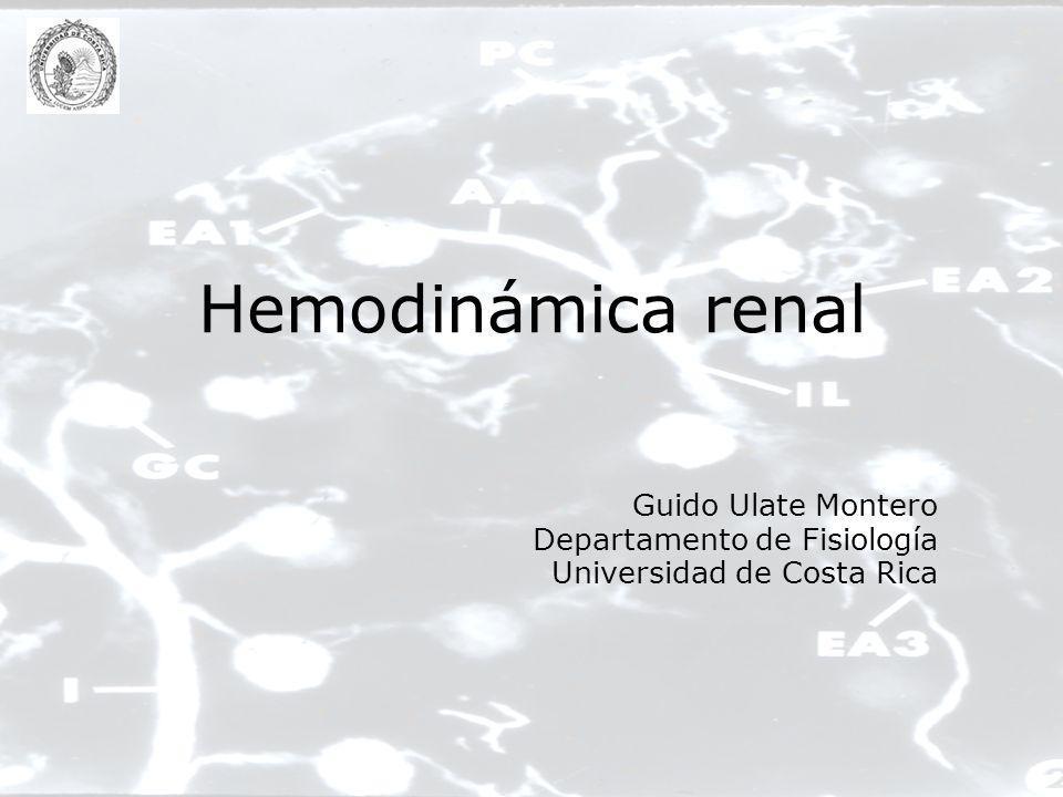 Hemodinámica renal Guido Ulate Montero Departamento de Fisiología