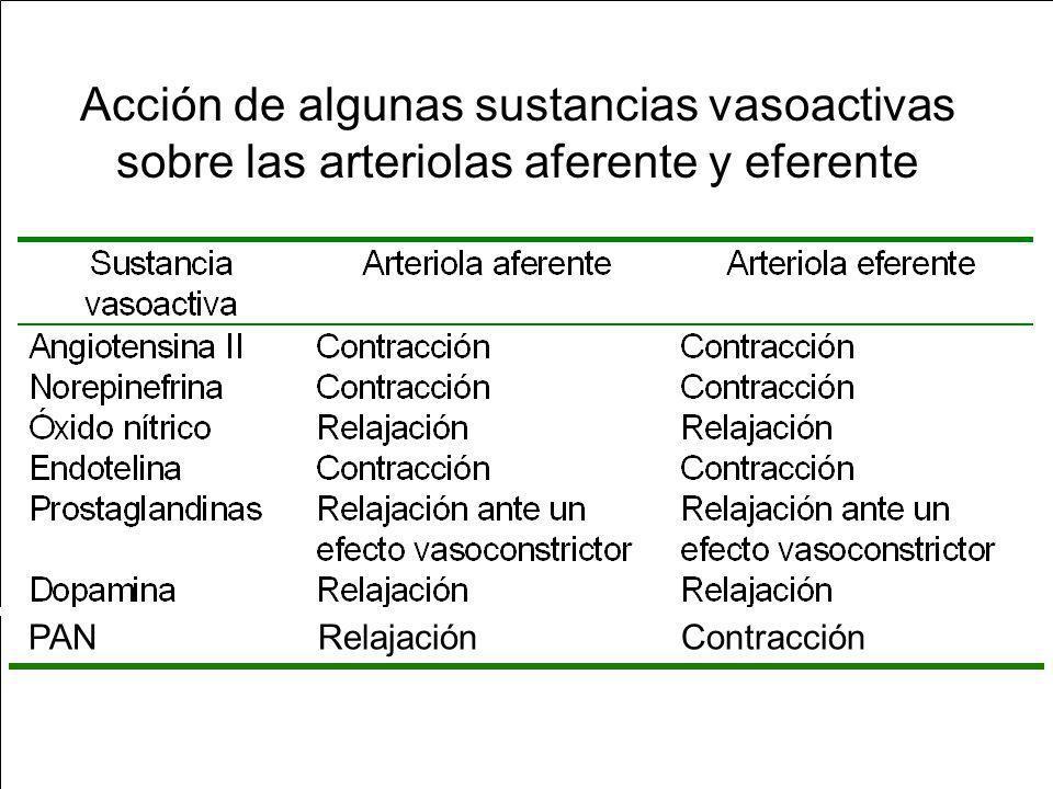 Acción de algunas sustancias vasoactivas sobre las arteriolas aferente y eferente