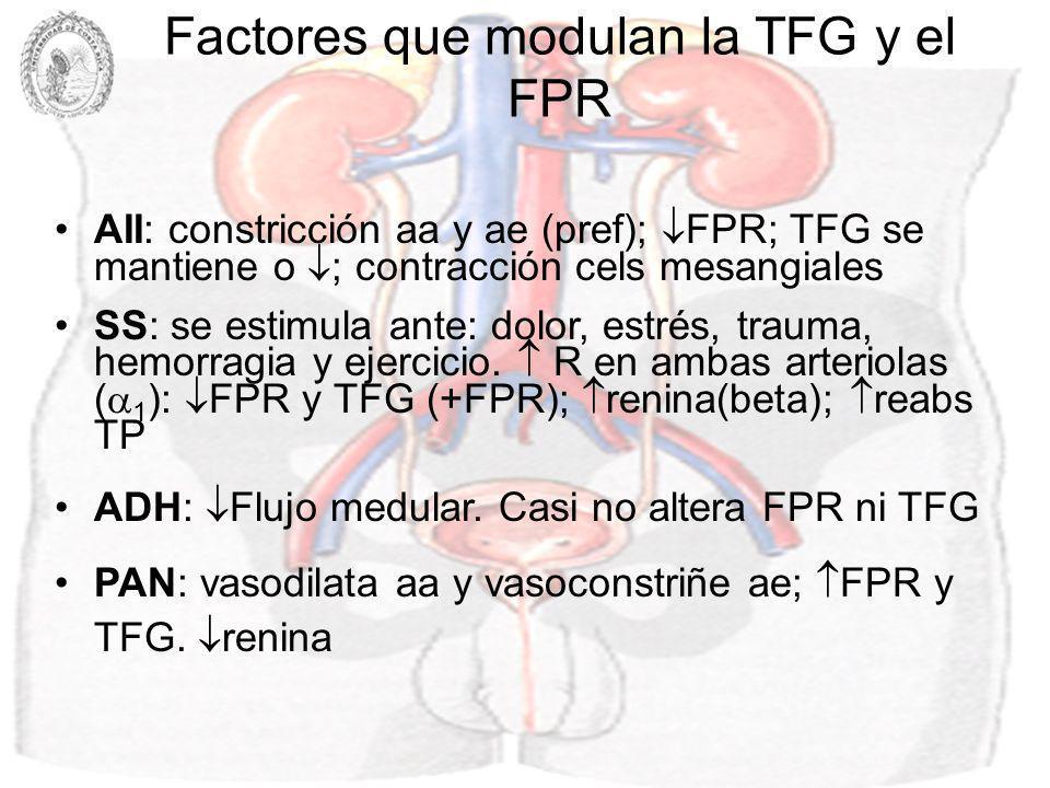 Factores que modulan la TFG y el FPR