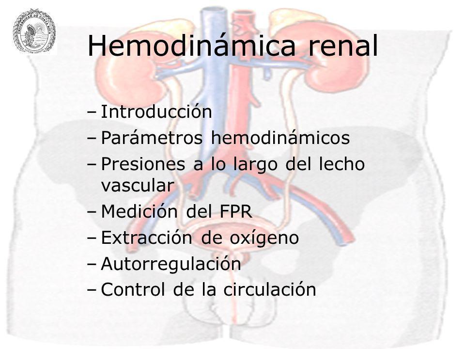 Hemodinámica renal Introducción Parámetros hemodinámicos