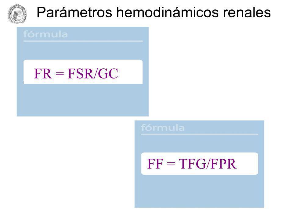 Parámetros hemodinámicos renales