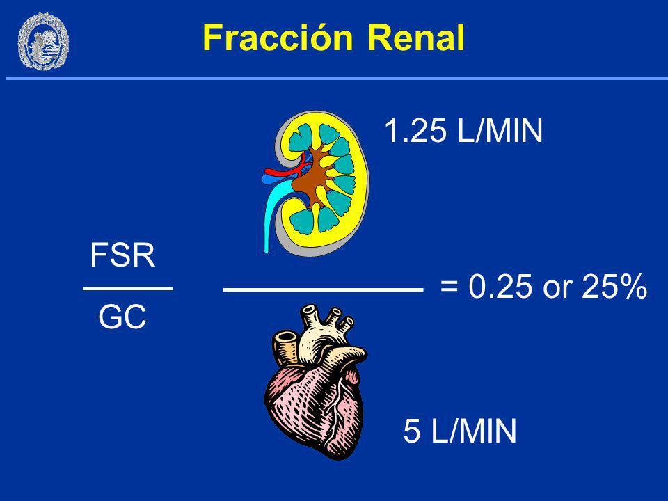 Fracción Renal 1.25 L/MIN FSR GC = 0.25 or 25% 5 L/MIN