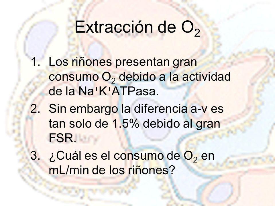 Extracción de O2 Los riñones presentan gran consumo O2 debido a la actividad de la Na+K+ATPasa.