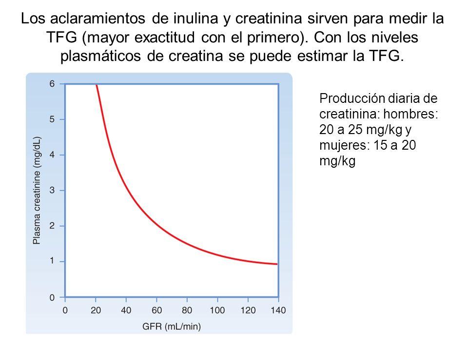 Los aclaramientos de inulina y creatinina sirven para medir la TFG (mayor exactitud con el primero). Con los niveles plasmáticos de creatina se puede estimar la TFG.