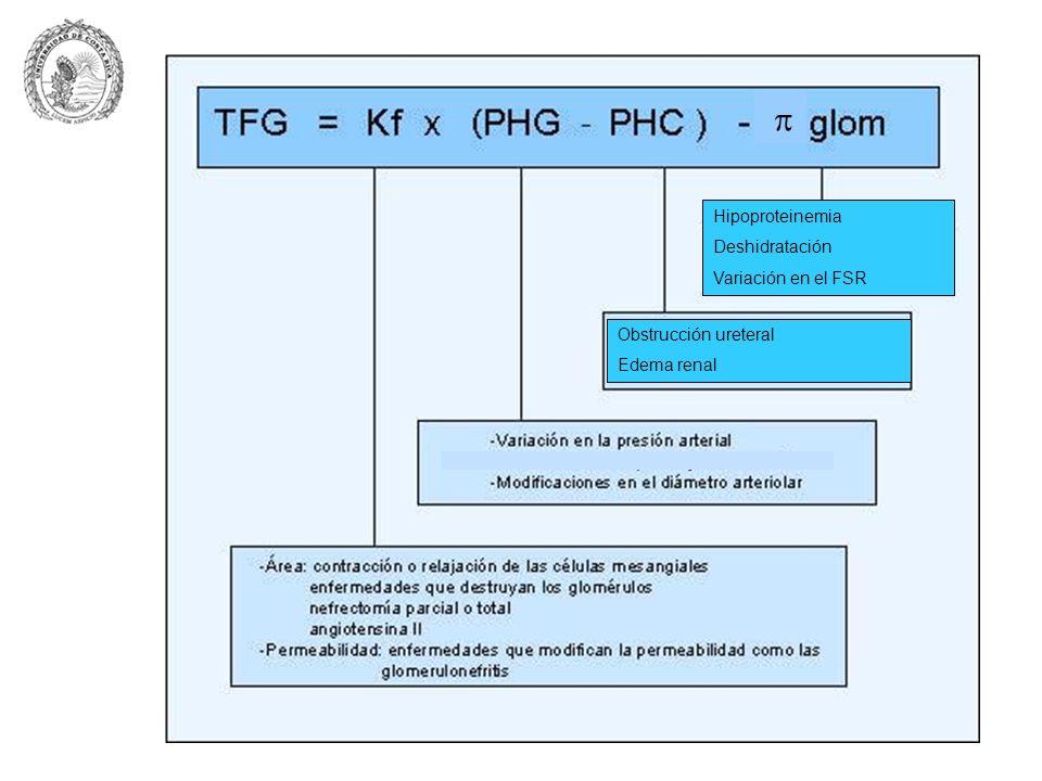  Hipoproteinemia Deshidratación Variación en el FSR