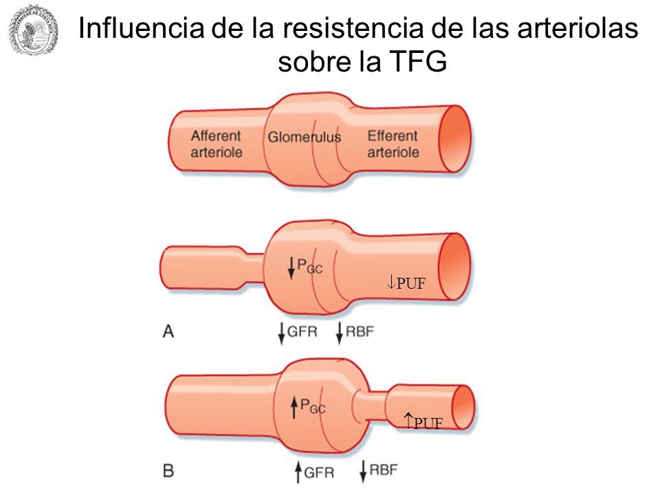 Influencia de la resistencia de las arteriolas