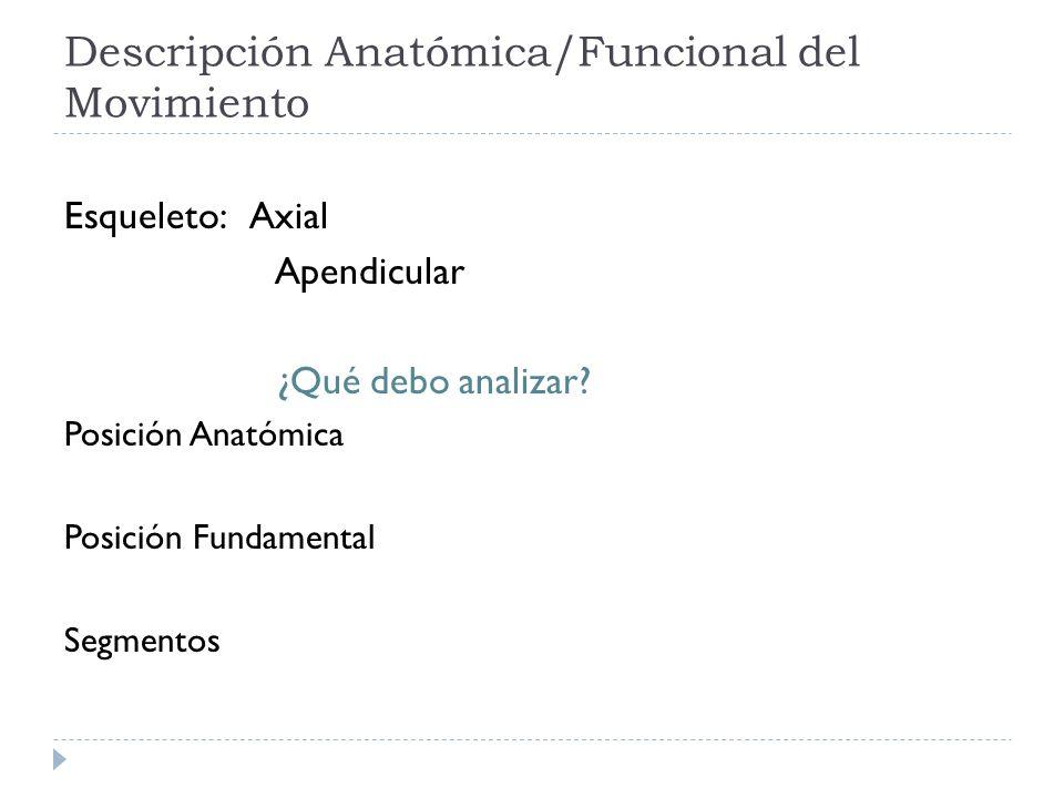 Descripción Anatómica/Funcional del Movimiento