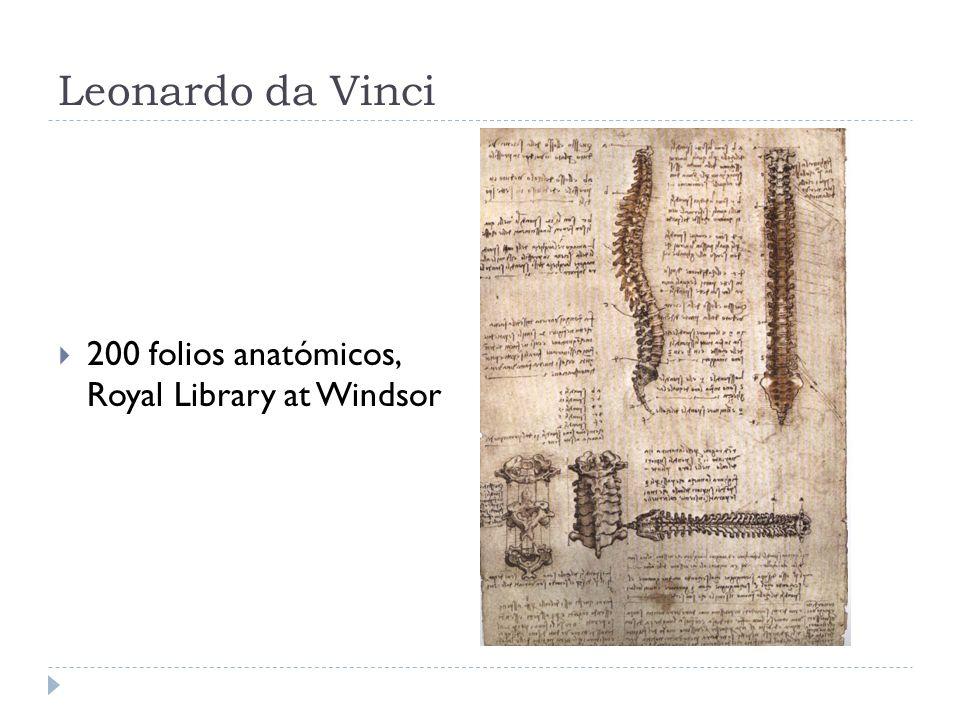 Leonardo da Vinci 200 folios anatómicos, Royal Library at Windsor