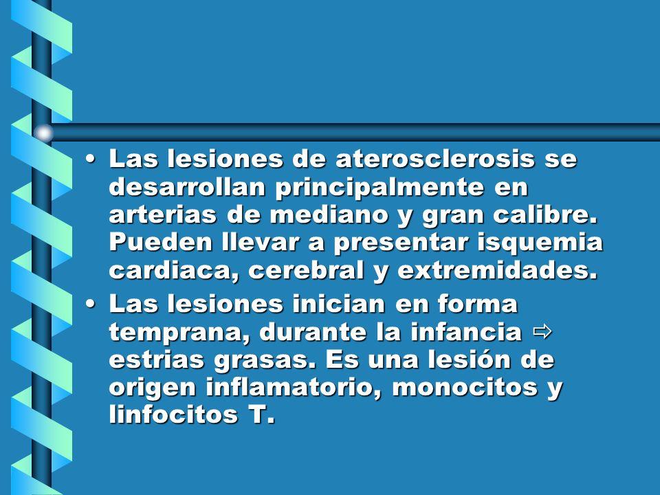 Las lesiones de aterosclerosis se desarrollan principalmente en arterias de mediano y gran calibre. Pueden llevar a presentar isquemia cardiaca, cerebral y extremidades.
