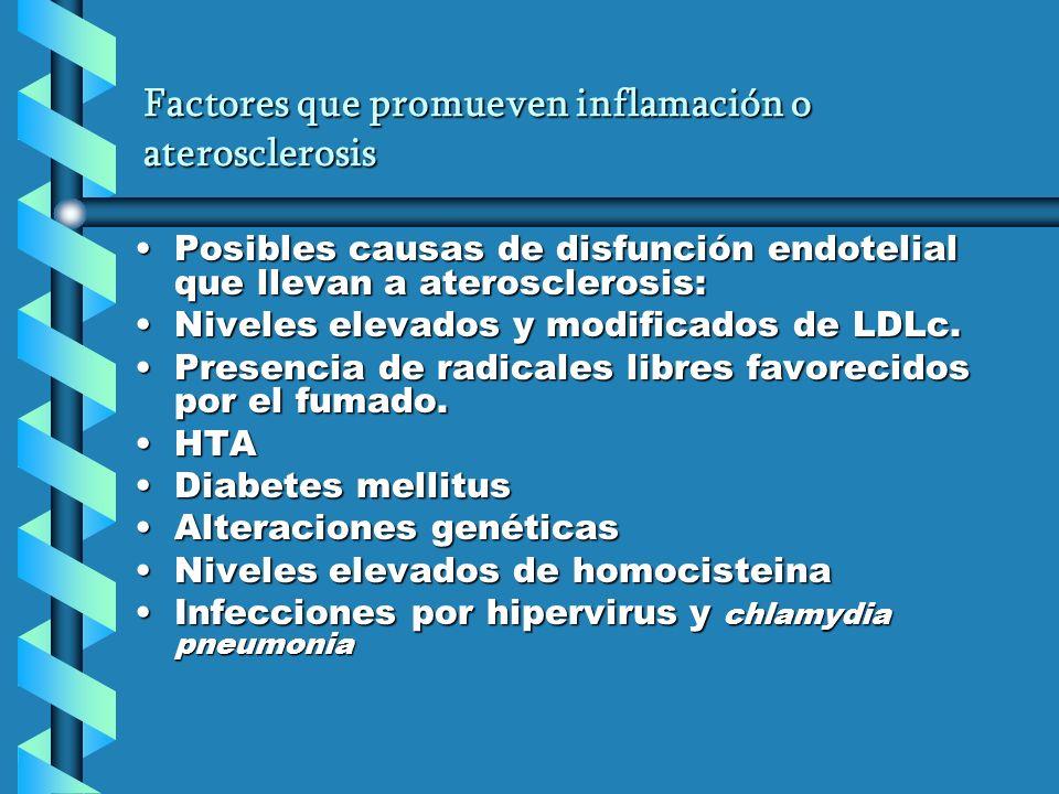 Factores que promueven inflamación o aterosclerosis