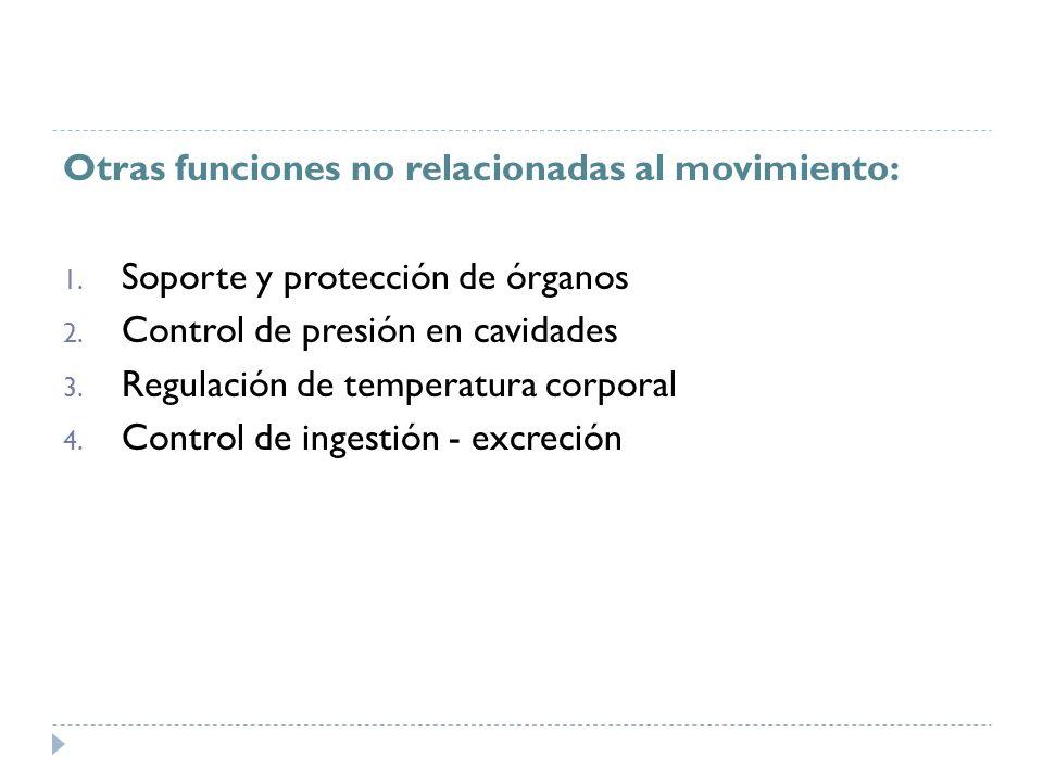 Otras funciones no relacionadas al movimiento: