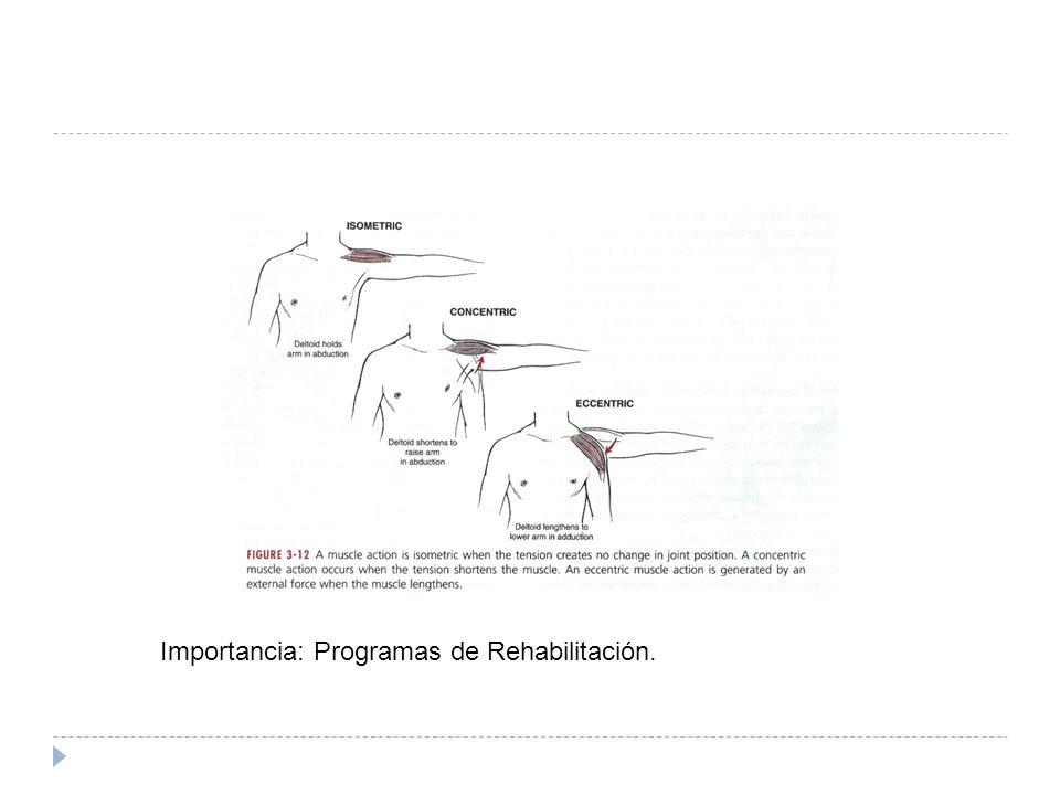Importancia: Programas de Rehabilitación.