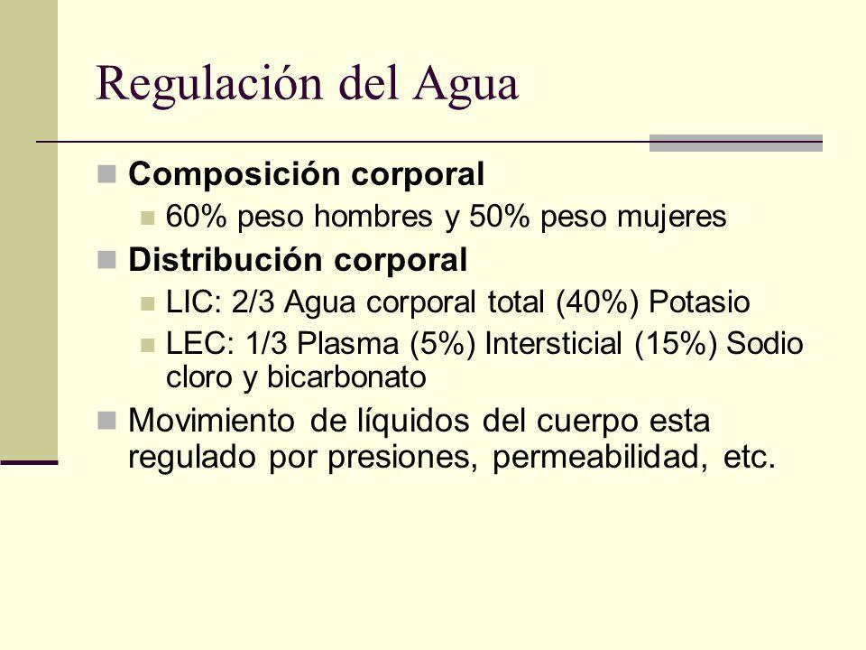 Regulación del Agua Composición corporal Distribución corporal